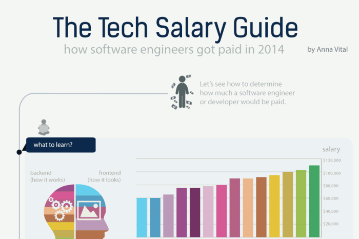 Software Engineer Salary Guide 2014 - Infographic